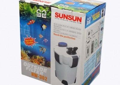 Sun_sun_1