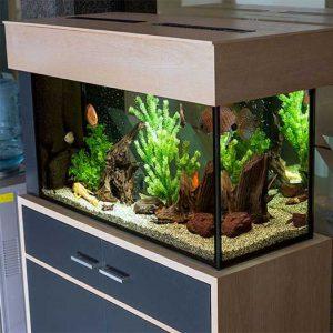 Оборудвани аквариуми над 150 л.